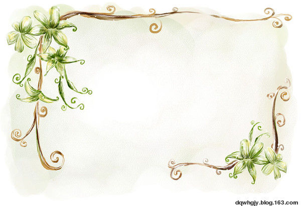 唯美花藤边框手绘